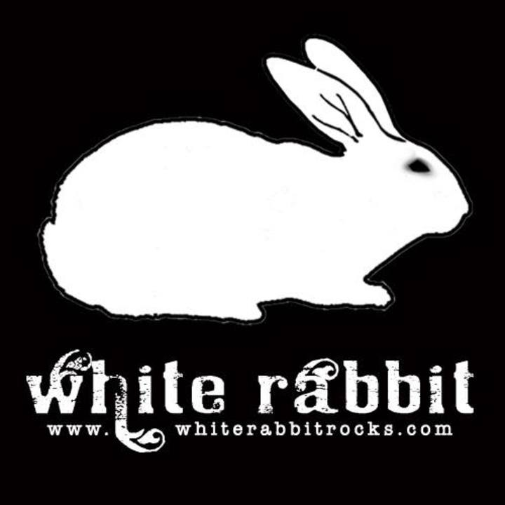 White Rabbit Tour Dates