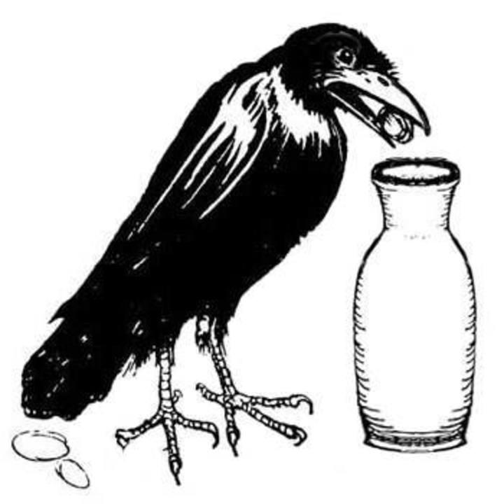 Crow Milk Tour Dates