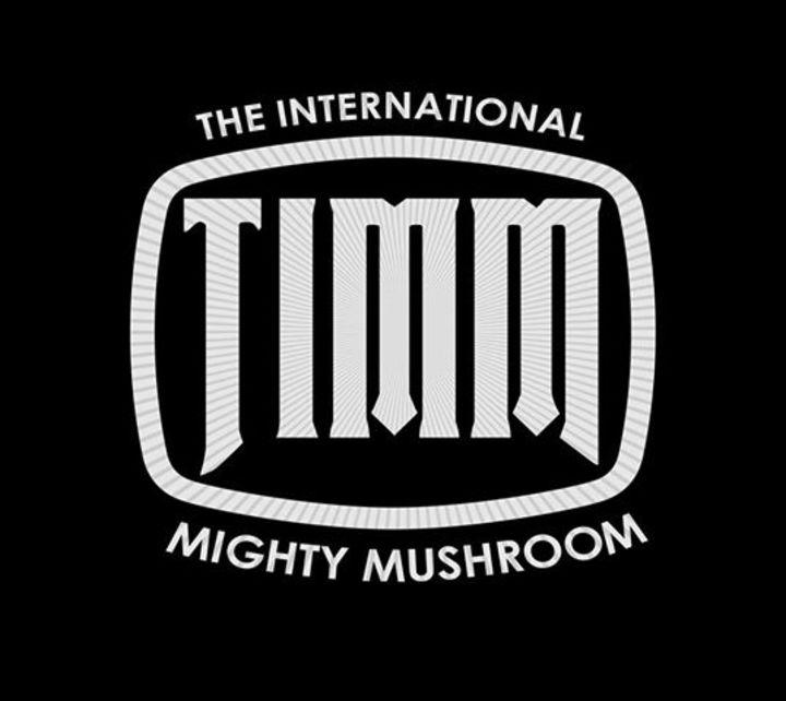 Timm Tour Dates