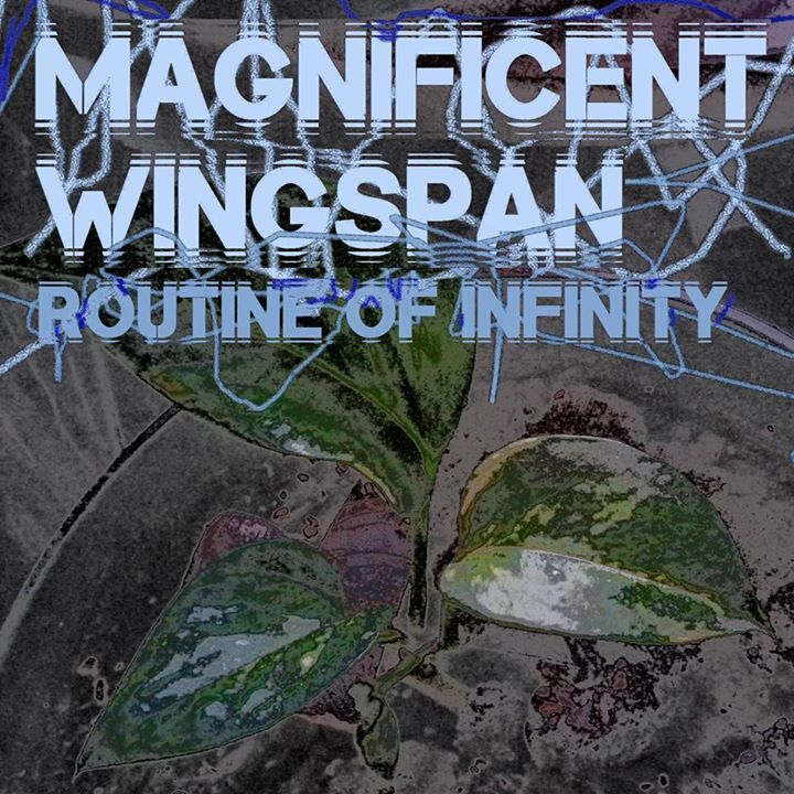 Magnificent Wingspan Tour Dates