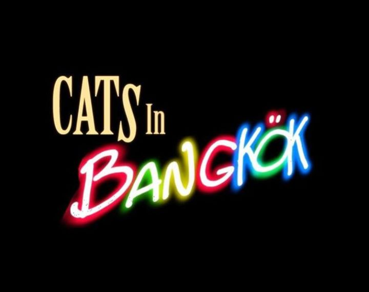 CATS IN BANGKOK Tour Dates