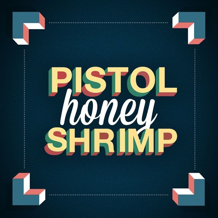 Pistol Shrimp UK Tour Dates