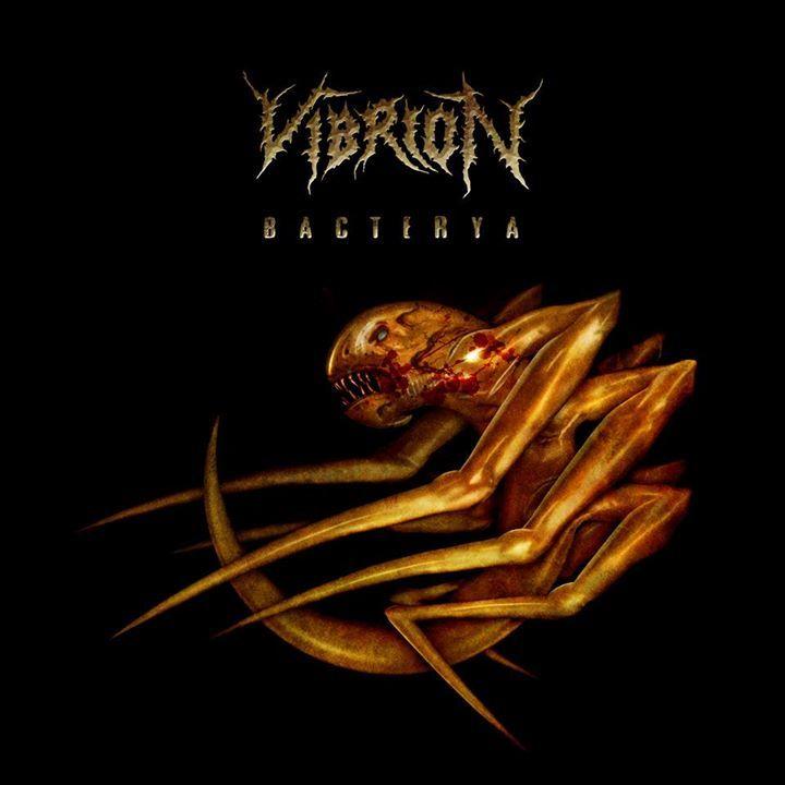 Vibrion Tour Dates