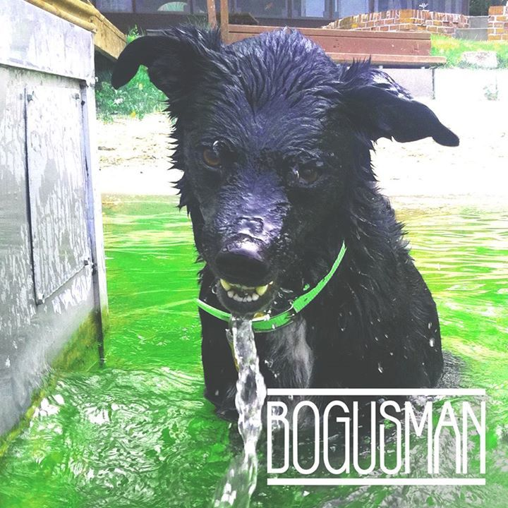 Bogusman Tour Dates