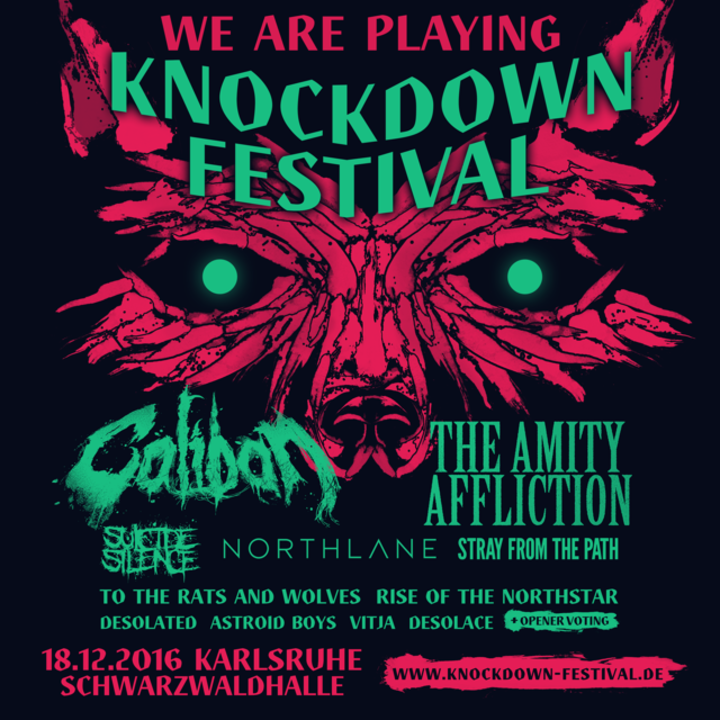 The Amity Affliction @ Knockdown Festival - Karlsruhe, Germany