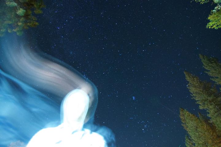 Warbler @ Scandinavia - Emeryville, CA