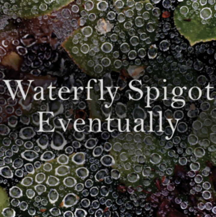 Waterfly Spigot Tour Dates