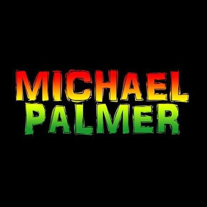 Michael Palmer Tour Dates
