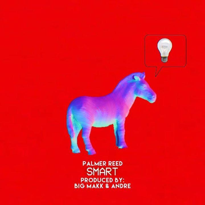 Palmer Reed Music Tour Dates