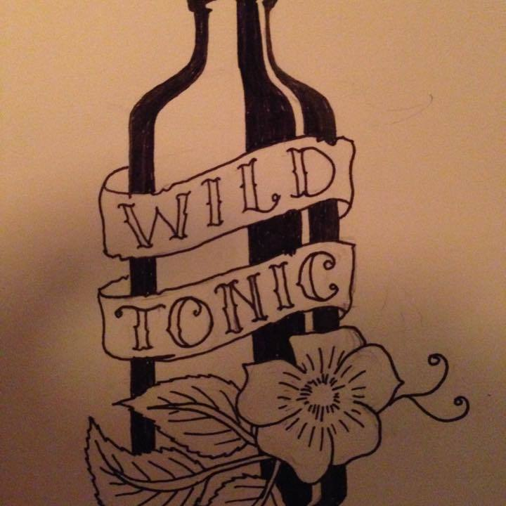 WildTonic @ Hank's Saloon  - Brooklyn, NY