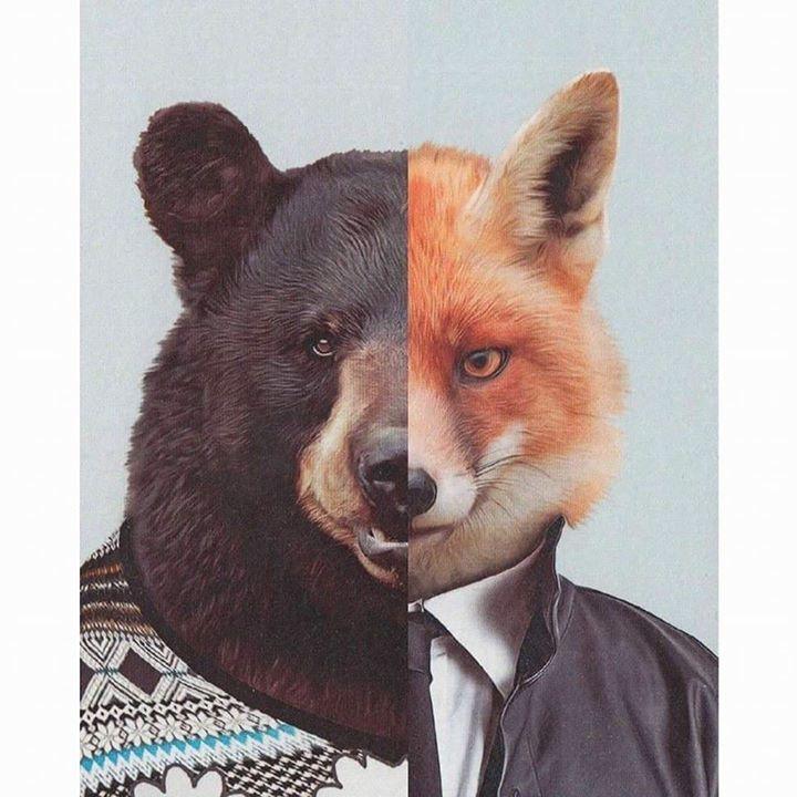 Bombata & The Fox Tour Dates