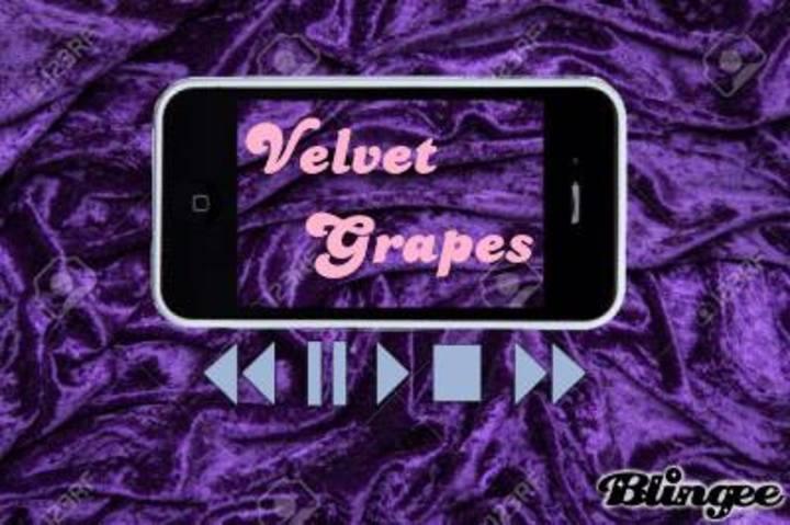 Velvet Grapes Tour Dates