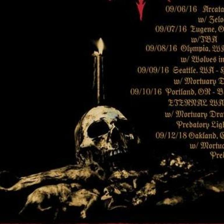Dispirit Tour Dates