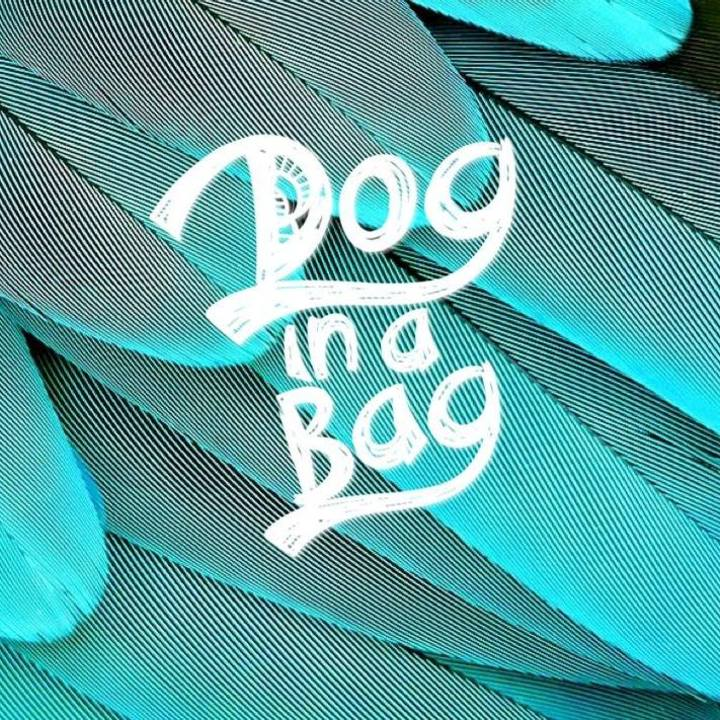 Dog in a Bag Tour Dates