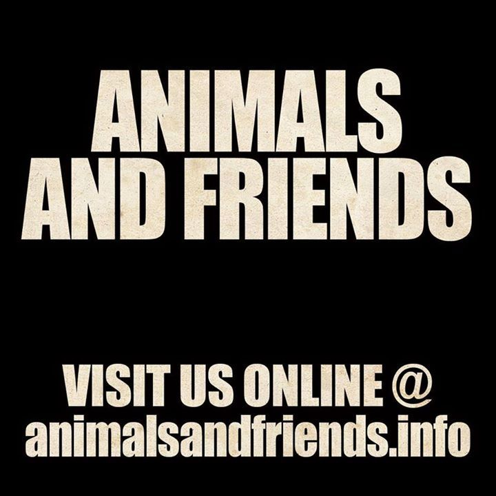 Animals and Friends Tour Dates