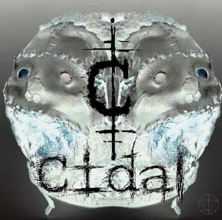 Cidal Tour Dates