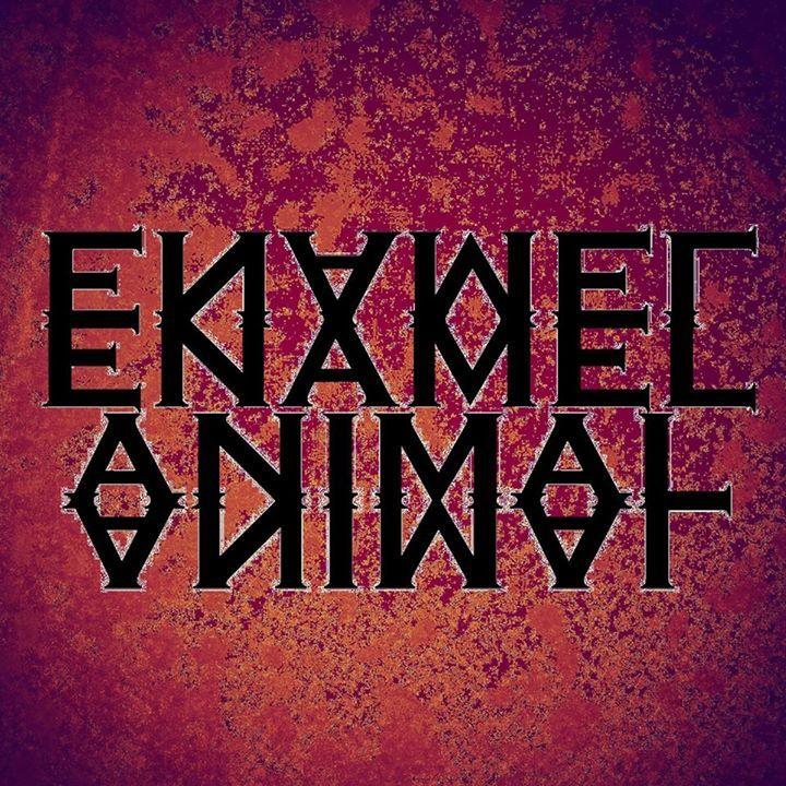 Enamel Animal Tour Dates