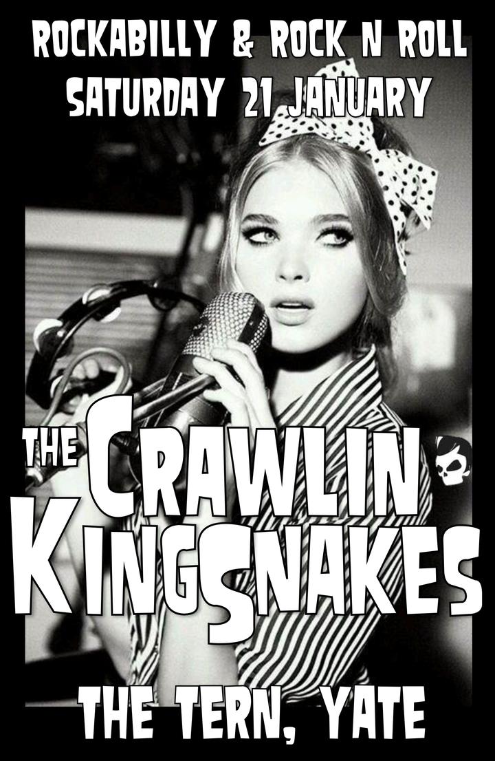 The Crawlin' Kingsnakes @ The Tern - Yate, United Kingdom