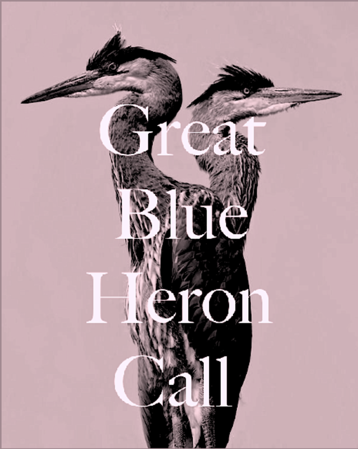 Great Blue Heron Call Tour Dates