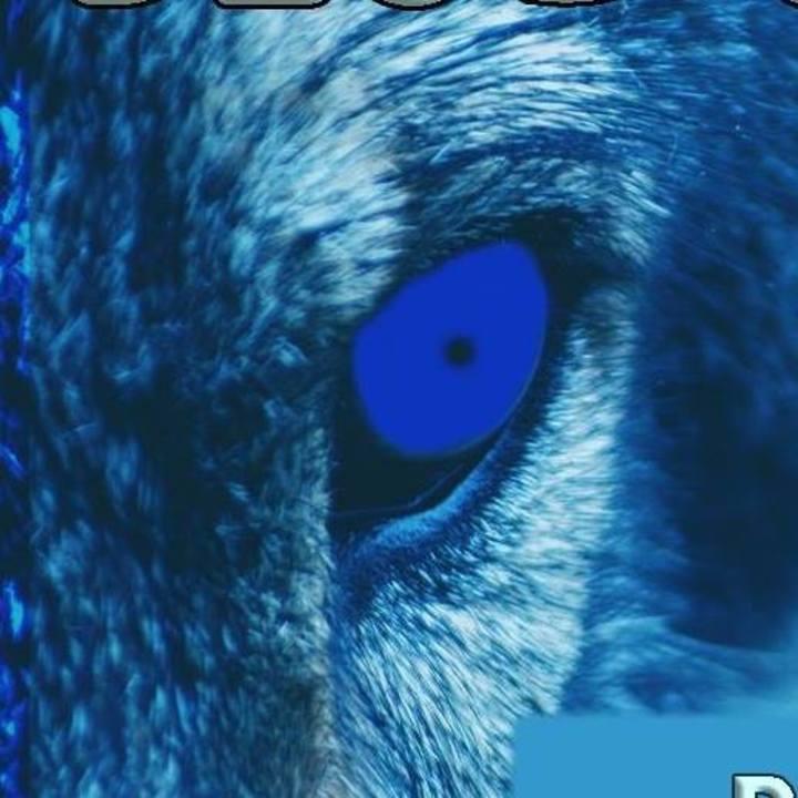 Blue Savages Tour Dates