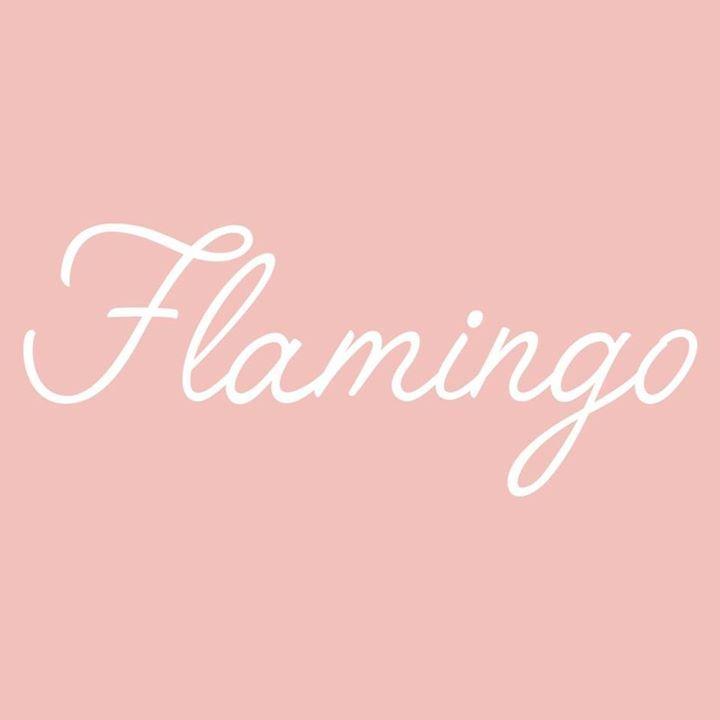 Flamingo Tour Dates
