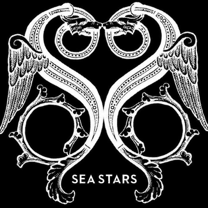 SEA STARS @ Orcas Center - Eastsound, WA