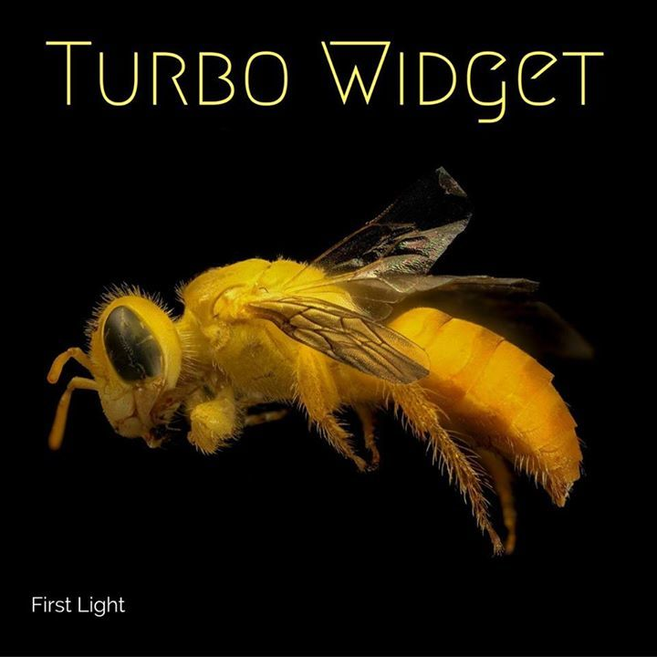 Turbo Widget Tour Dates