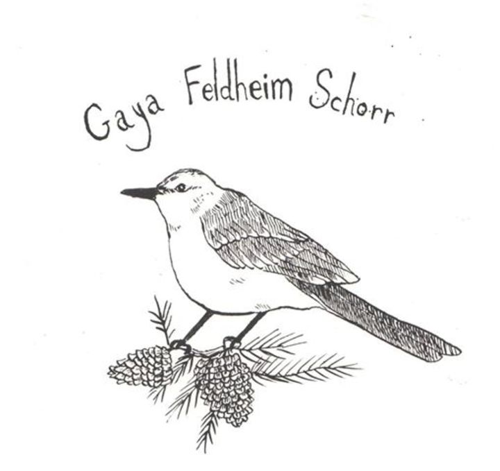 Gaya Feldheim Schorr Music Tour Dates