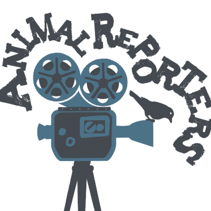 Animal Reporters Tour Dates