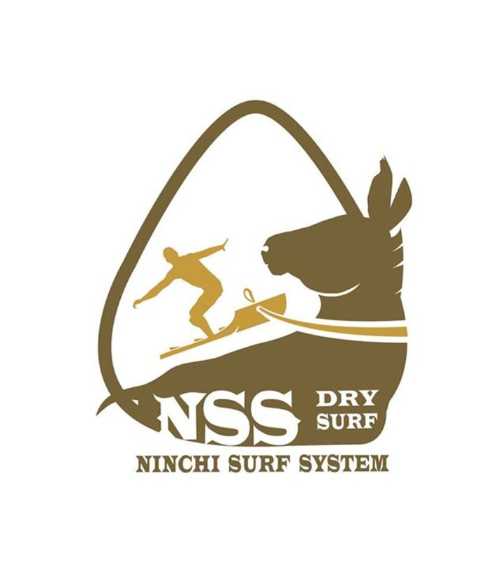 Ninchi Surf System Tour Dates