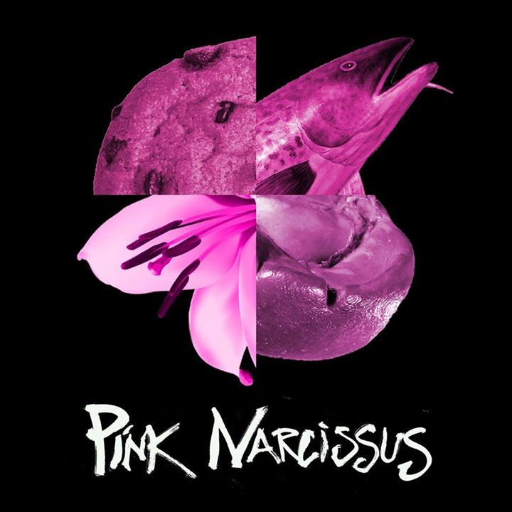 Pink Narcissus Tour Dates