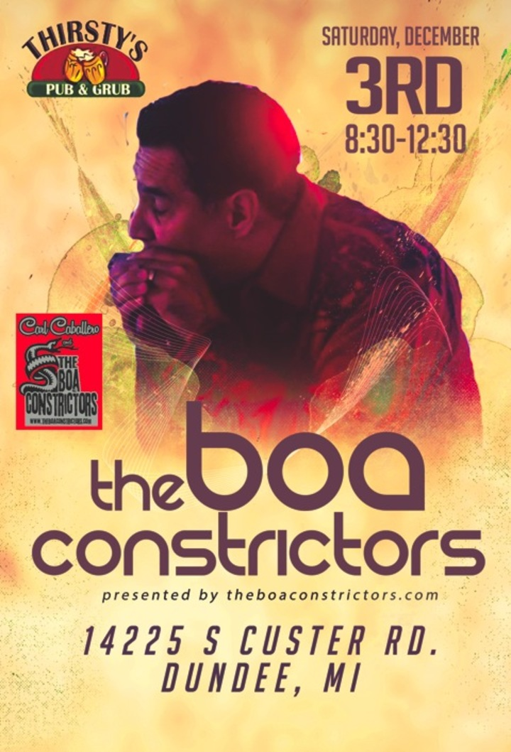 The Boa Constrictors @ Thirsty's Pub - Dundee, MI