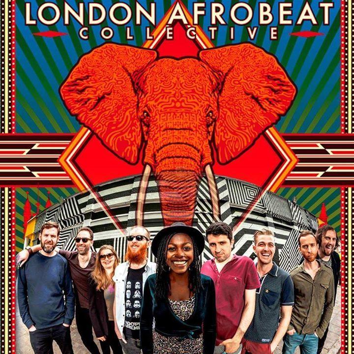 London Afrobeat Collective Tour Dates