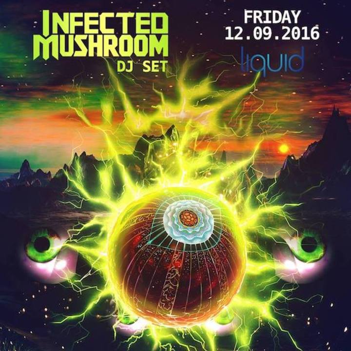 Infected Mushroom @ Liquid - Madison, WI