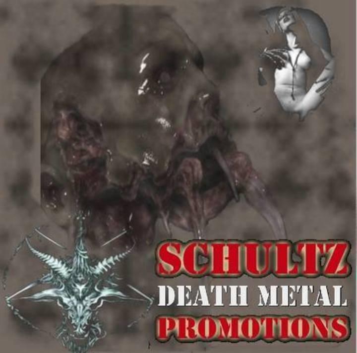 Schultz Promo DM Tour Dates