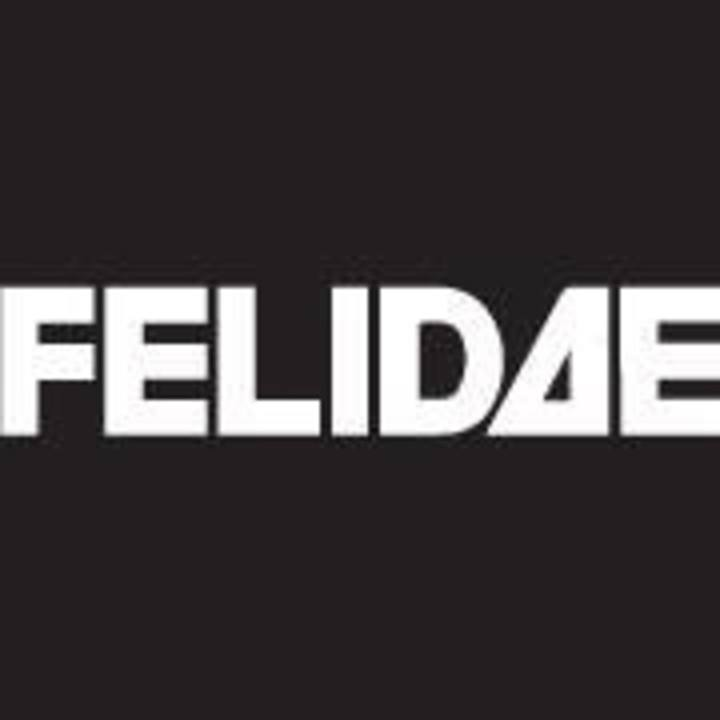 Felidae @ Groovestation - Dresden, Germany