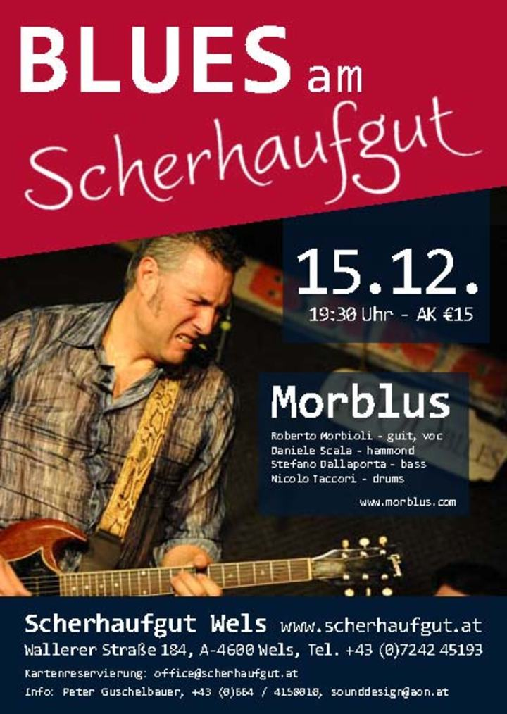 Roberto Morbioli @ Scherhaufgut - Wels, Austria