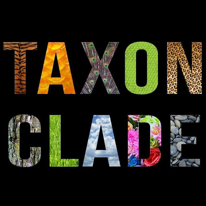 Taxon Clade Tour Dates