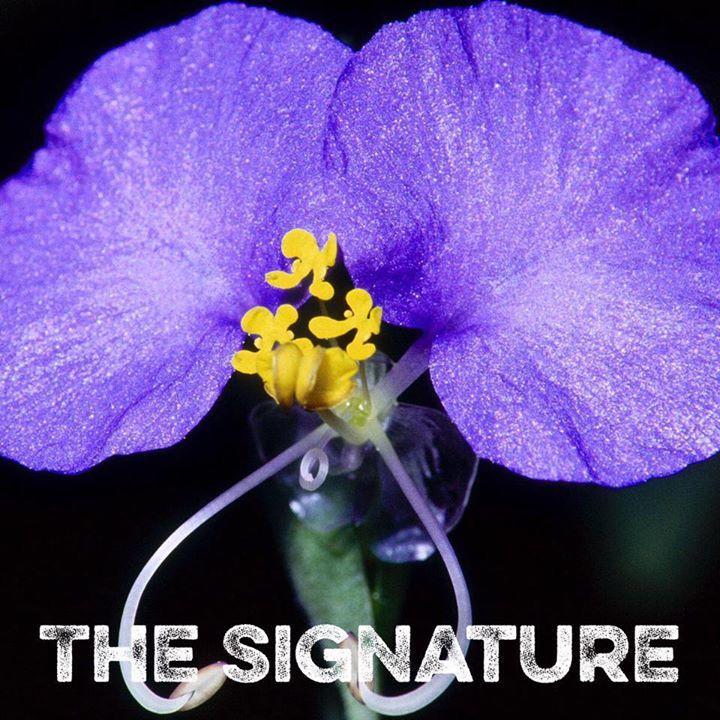 The Signature Tour Dates