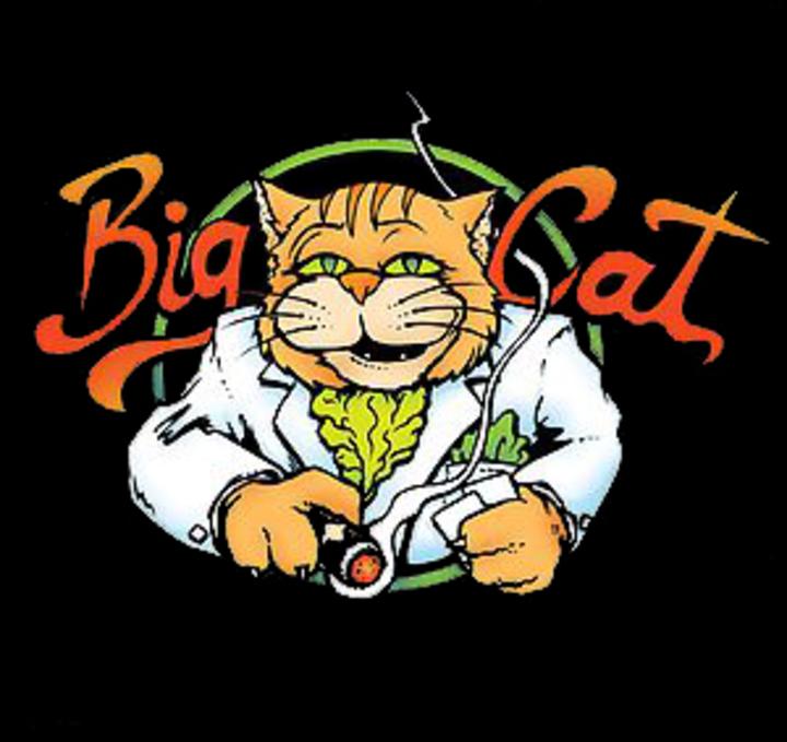 Big Cat @ The Saxon Pub - Austin, TX