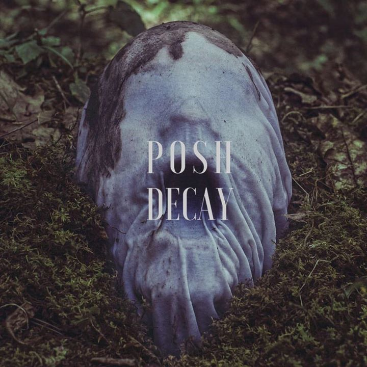 POSH DECAY Tour Dates