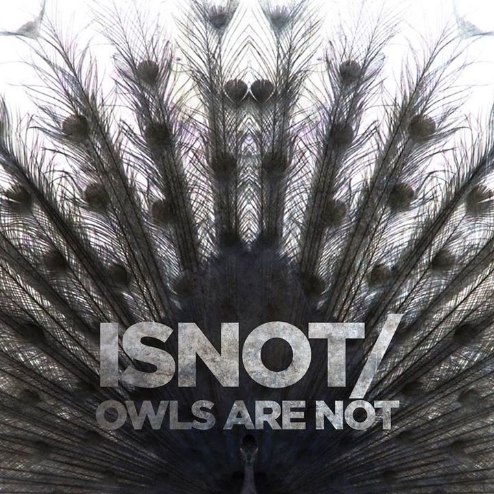 Owls Are Not Tour Dates