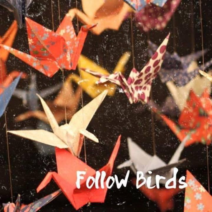 Follow Birds Tour Dates