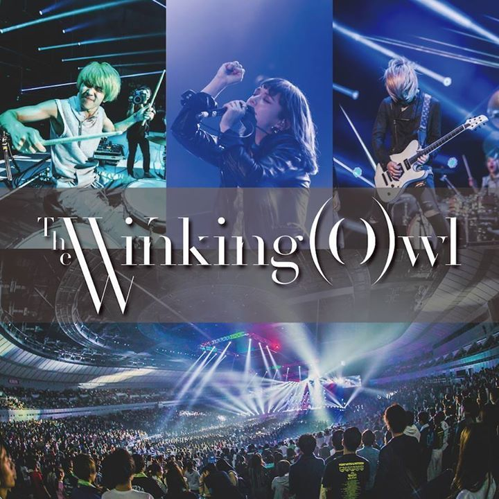 The Winking Owl Tour Dates