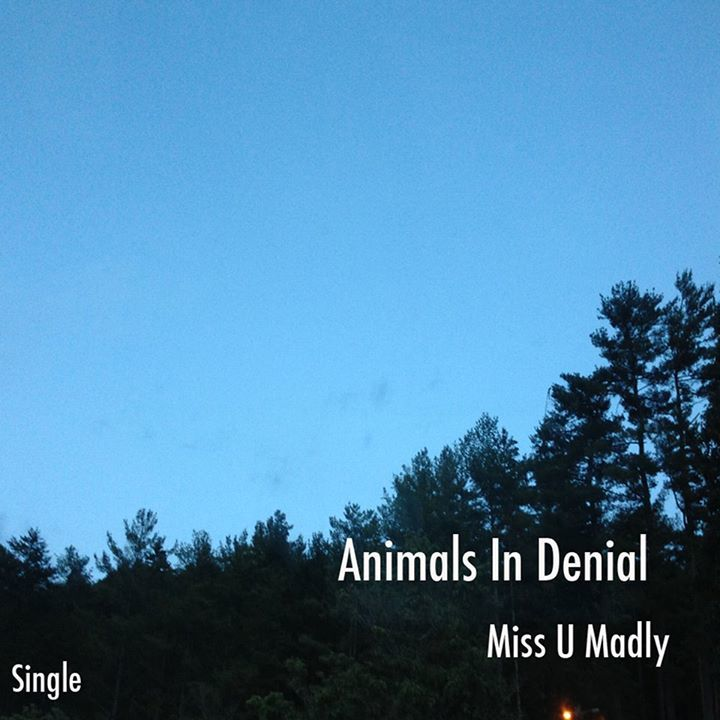 Animals In Denial Tour Dates
