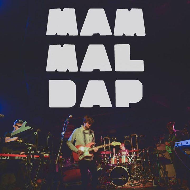 Mammal Dap Tour Dates