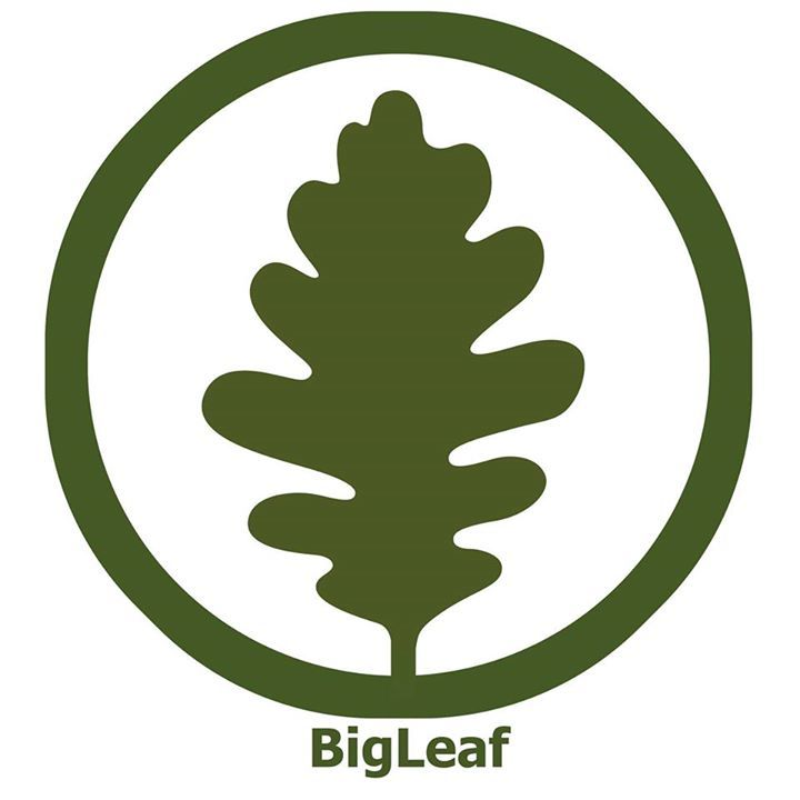 Bigleaf Tour Dates