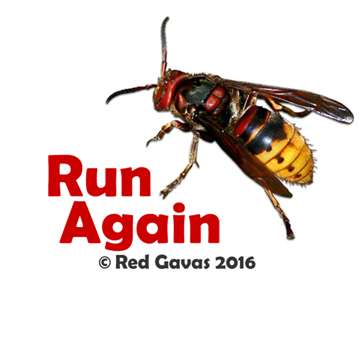 Red Gavas Tour Dates