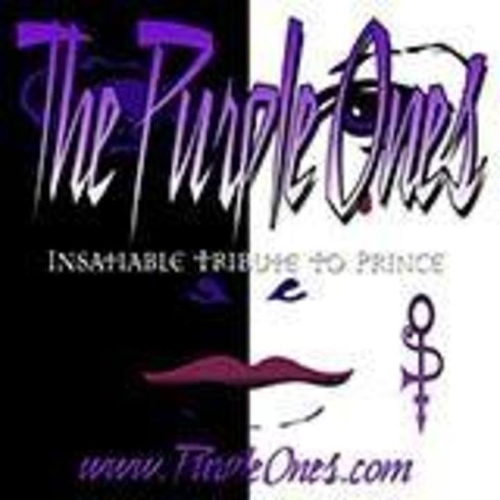 The Purple Ones - Insatiable Tribute to Prince Tour Dates