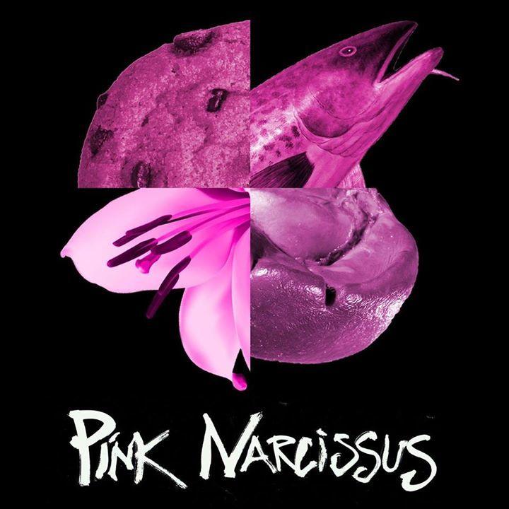 Pink Narcissus Tour Dates